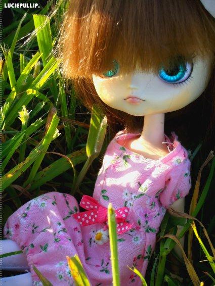 Ma princesse au soleil. *w*