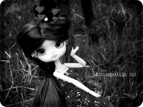 Moi et mon coeur, le soleil et les fleurs, les chiens les p'tits oiseaux et les.... dromadaires. :D
