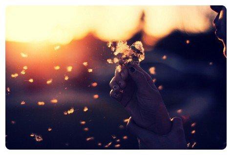 Il m'est difficile d'y croire encore. À ça, je veux dire. Ce dont j'ai toujours cru : l'Amour, le Bonheur...