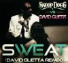 ` &Snoop Dogg ft Dɑvid Guettɑ remix. ๑;.      Wet. (2011)