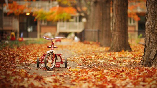 Tombent les amis comme feuillage d'automne