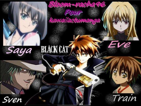 concours de black cat