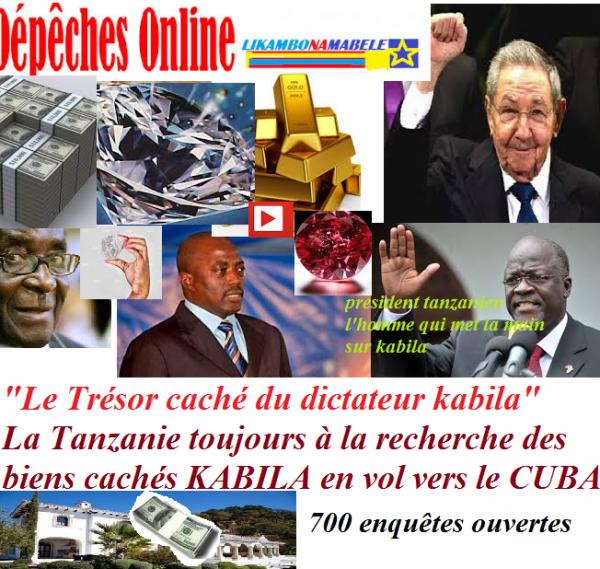 """""""Les liasses de billets découverts dans le palais de Kabila font des bruits en Tanzanie"""""""