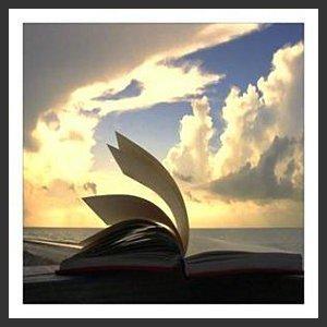 """""""Chaque lecture est un acte de résistance. Une lecture bien menée sauve de tout, y compris de soi-même.""""  Daniel Pennac"""