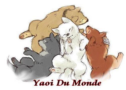 Yaoi du monde avec Wolf's rain