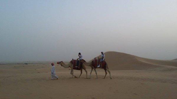 safari Abu Dhabi  2015