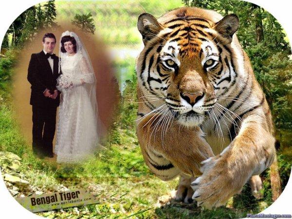 montage photos de moi  et ma femme maria