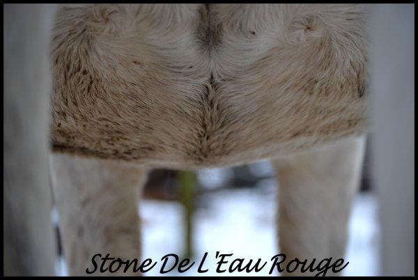 Stone De L'Eau Rouge