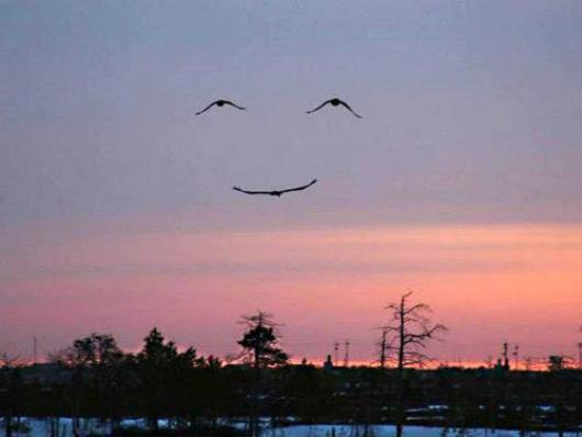 Smile !!!!!! =D