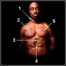 Signification De Ses Tatouages Torse Tupac Shakur L Histoire