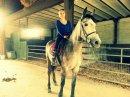 Photo de Just-a-dream-horse