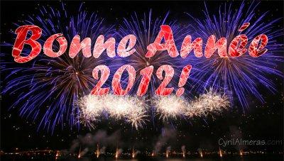 bonne année a tous mes amis blogeur