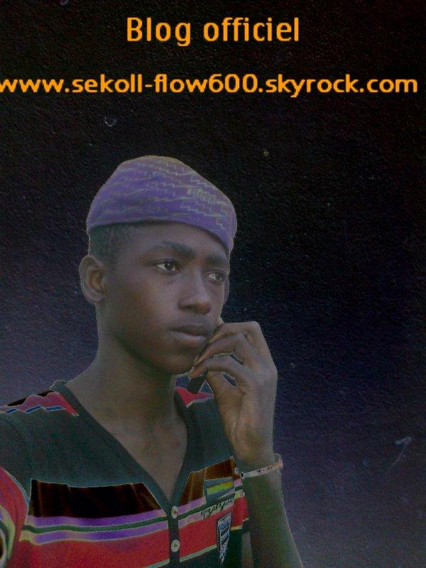 sekoll flow