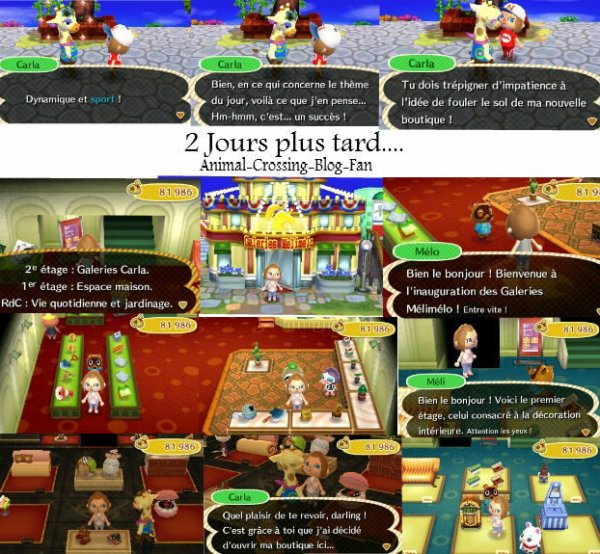 Blog de animal crossing blog fan animal crossing life for Agrandissement maison animal crossing new leaf