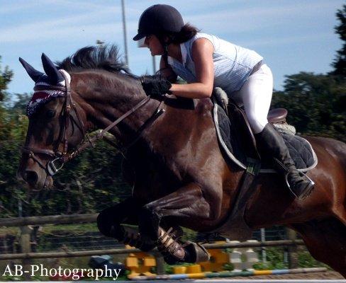 """""""On ne peut prétendre maîtriser un cheval tant qu'on ne se maîtrise pas soi-même."""" - Pat Parelli"""