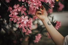 Blog de amour-passion-espoir
