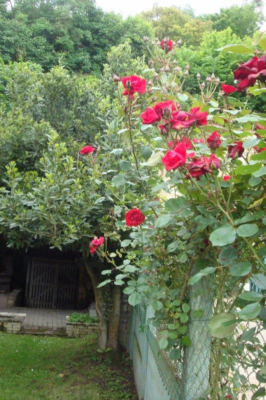 Florilège à Lavardin