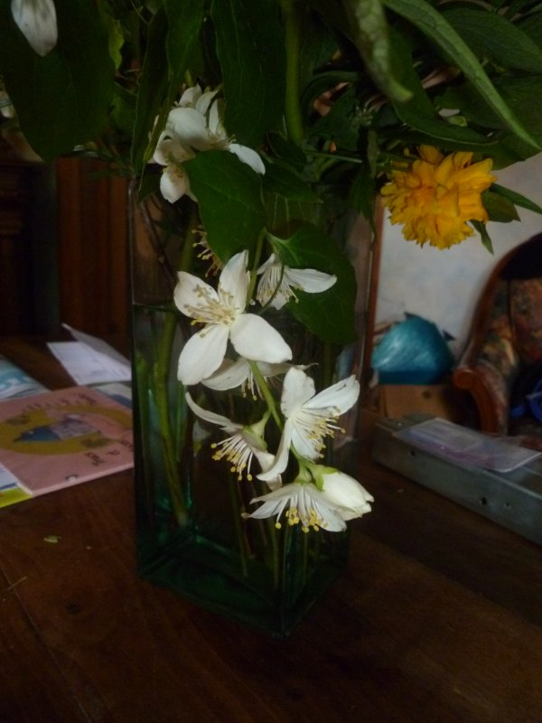 Fleuries