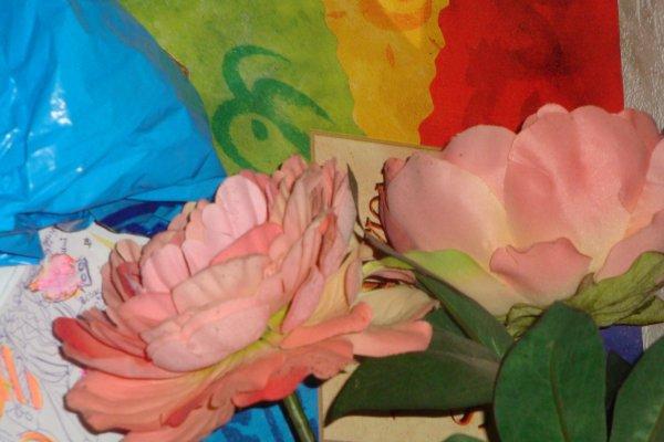 AIMER Recycler = Artmory Carnaval de Tours: Florilège Arcimboldo