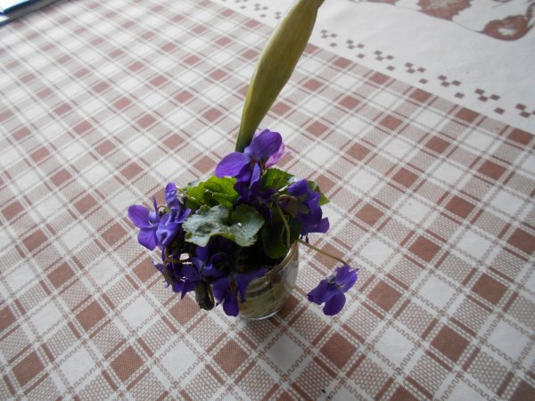 RDV Café fleurs