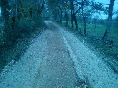 Broyage de pierres pour un chemin !