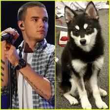 La différence entre Un chien et Un Mec ♥♥♥♥♥ :)