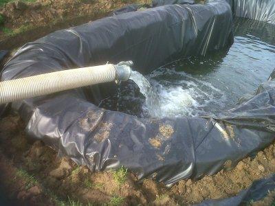 mon bassin