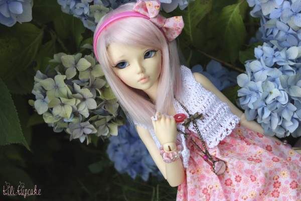 Umi in flowers...