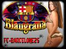 Photo de FC-Barcelone25