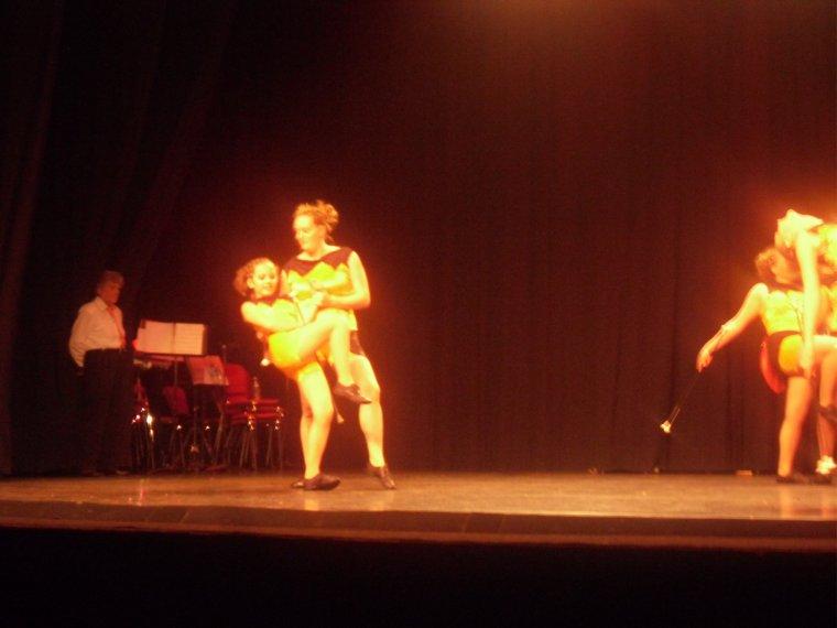 Concert de la Sainte-Cécile 2012 du réveil Dévillois (suite)