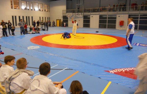 L'Open International de Belgique 2014 de Sambo à Thieu...