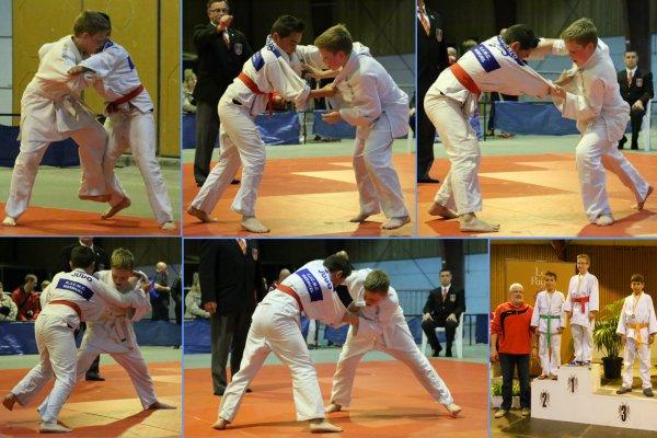 Le 42 ème Grand Prix de Judo de la ville d'Ath 2014 à Ath...