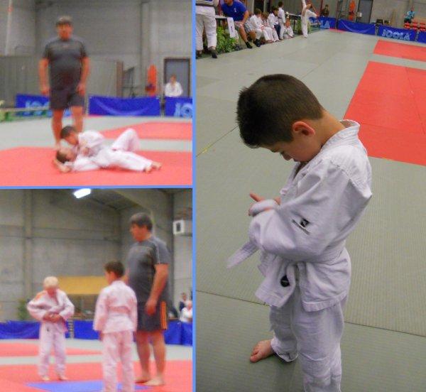 """Le Tournoi """"Rencontre Pédagogique pour Poussins 2014"""" du Judo Club Budo Neufvilles à Neufvilles"""