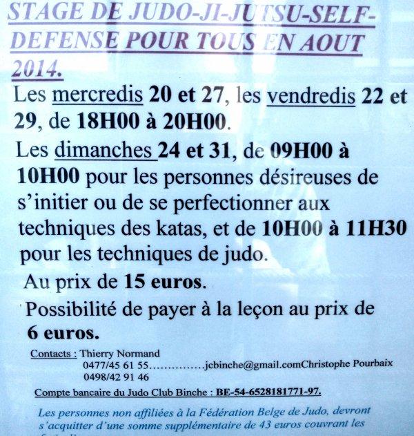 PUB... Un stage de Judo Ji-jutsu Self défense pour tous au Judo Club de Binche...