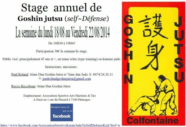 PUB... Un stage de Goshin Jutsu dans la région boraine pour ceux que cela intéressent...