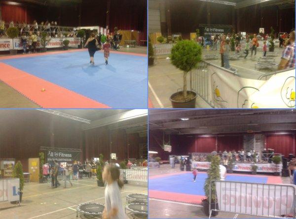 """Le  """"2 ème Salon des Sports 2014"""" de l'Entité de Colfontaine à l'Espace Magnum."""