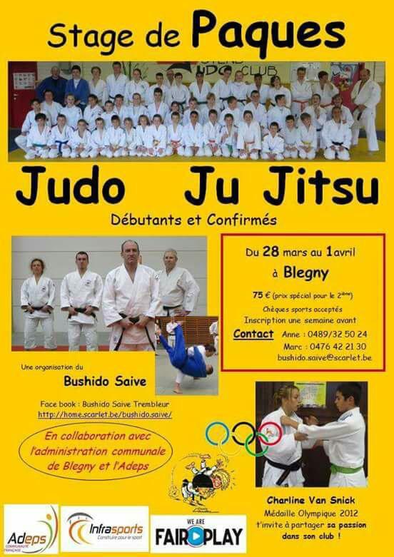 Stage de judo