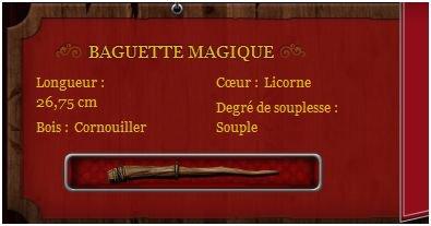 Pottermore: Mon compte PoupreAcajou12338