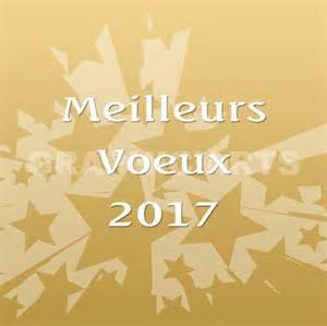 JE VOUS PRÉSENTE TOUT MES MEILLEURS VOEUX POUR 2017 MES AMIS....