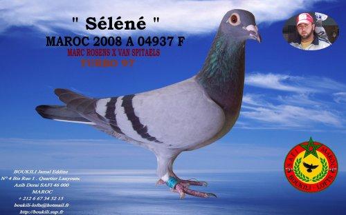 Sèlènè 08