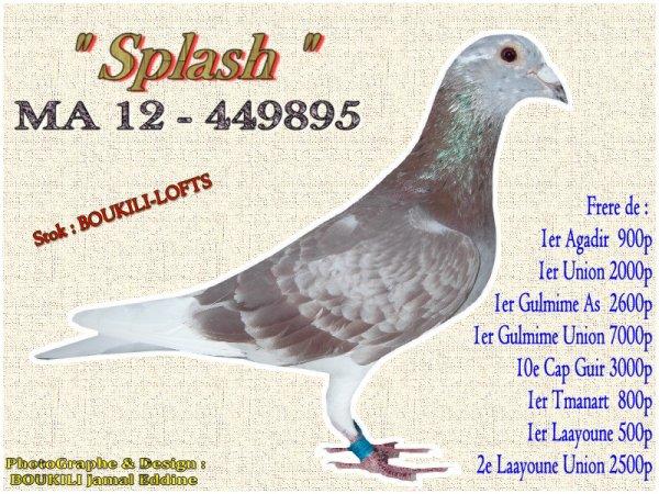 SPLASH 995