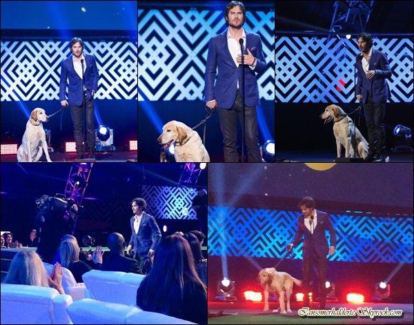 """Ian était présent au """"World dog prix"""" ce 14 janvier."""