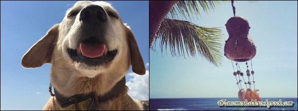 Ian et Nikki ont posté plusieurs photos sur Instagram pendant qu'ils sont en vacances au Caraïbes .