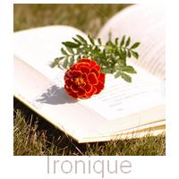 Sommaire Fictions et Fan-Fiction (suite)