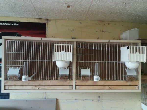 Cage repro