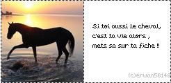 imagescet article a été créé par la-miss-cheval-67