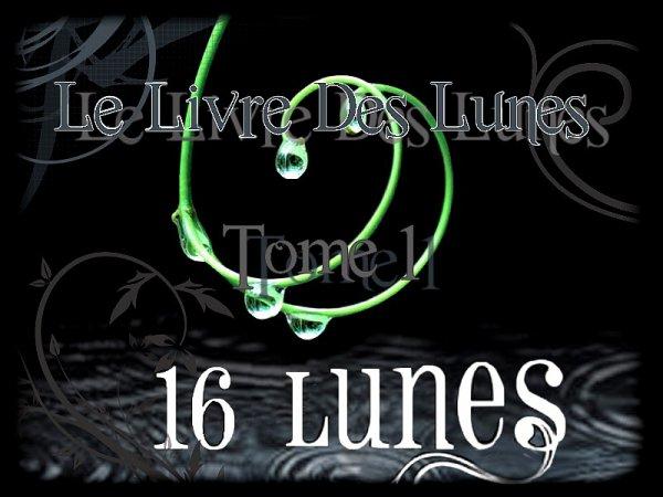 Le Livre Des Lunes Tome 1 : 16 Lunes
