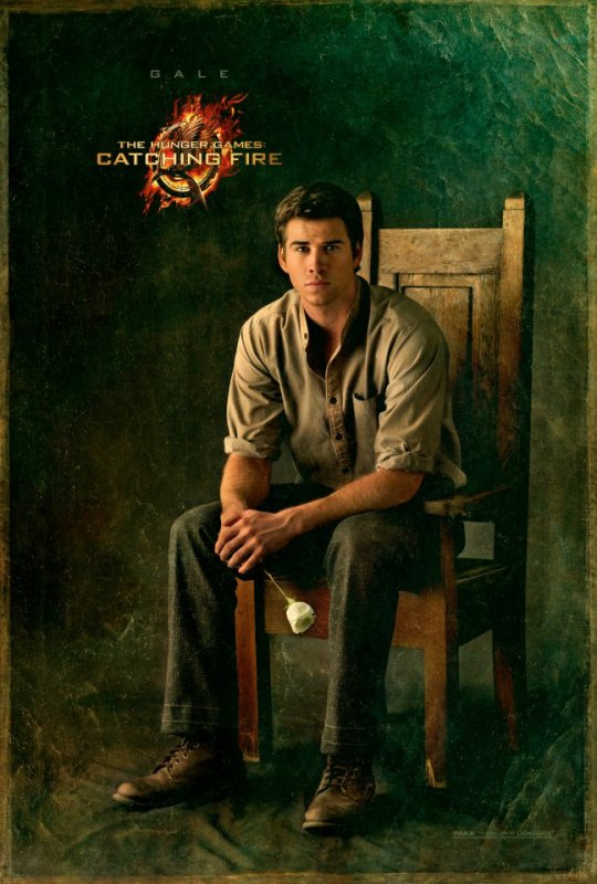 Hunger Games 2 : Le portrait de Gale