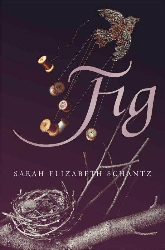 PRÉSENTATION : FIG de Sarah Elizabeth Schantz