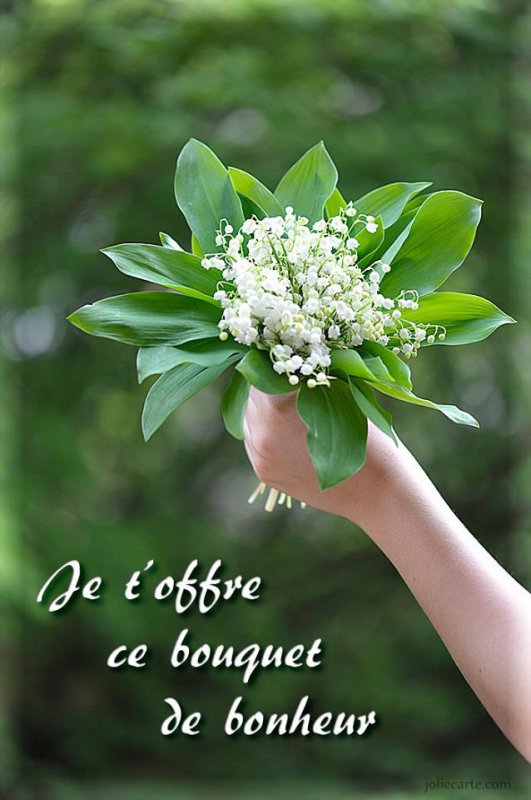 Petit Brin De Muguet Porte Bonheur A Celui Qui Viendra Sur Mon Blog